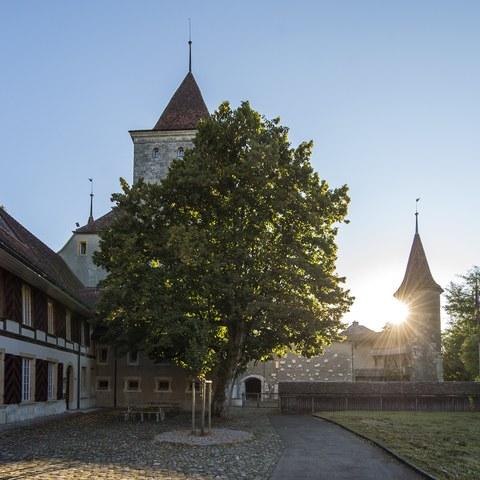 Schlosspark, morgens. Vergrösserte Ansicht
