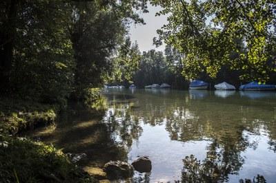 verträumter Zihl-Kanal